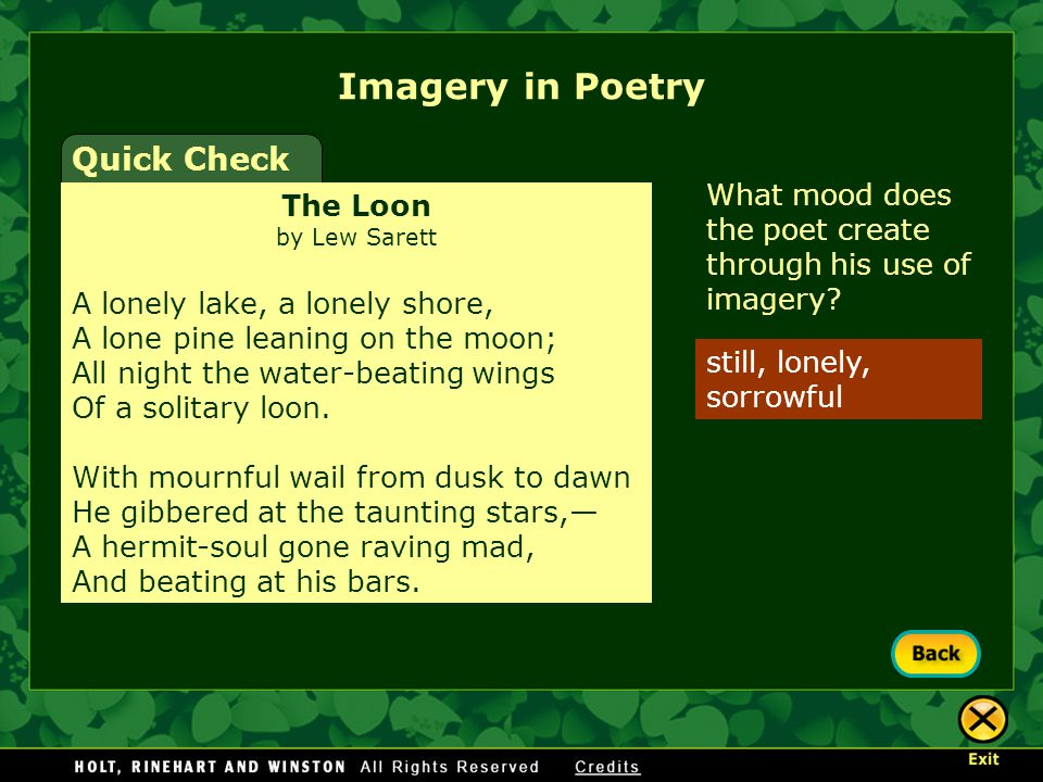 How does the imagery affect your emotions? Explain. What mood does the poet create through his use of imagery? Imagery in Poetry Quick Check The Loon