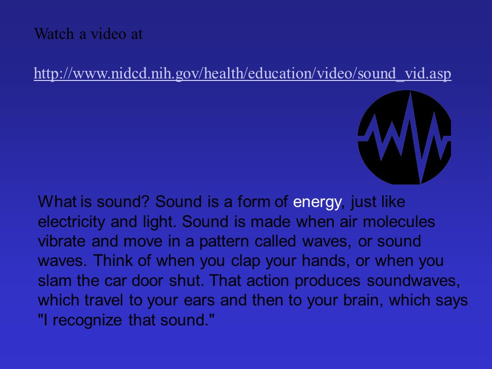 1.The Outer Ear The outer ear collects sound waves and sends them to the ear canal.