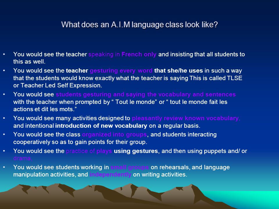What does an A.I.M language class look like.