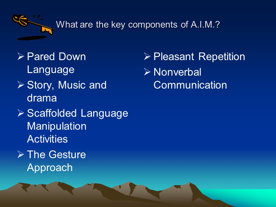 What are the key components of A.I.M..