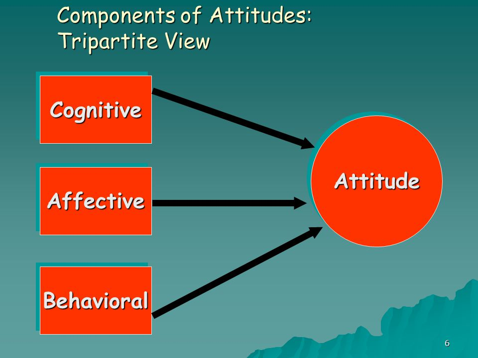 6 Components of Attitudes: Tripartite View CognitiveCognitive AffectiveAffective BehavioralBehavioral AttitudeAttitude
