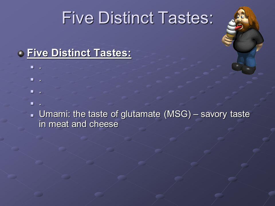Five Distinct Tastes:.... Umami: the taste of glutamate (MSG) – savory taste in meat and cheese Umami: the taste of glutamate (MSG) – savory taste in
