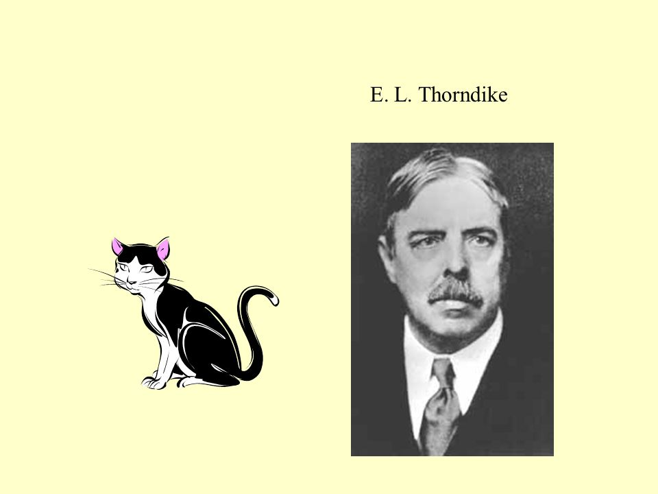 E. L. Thorndike