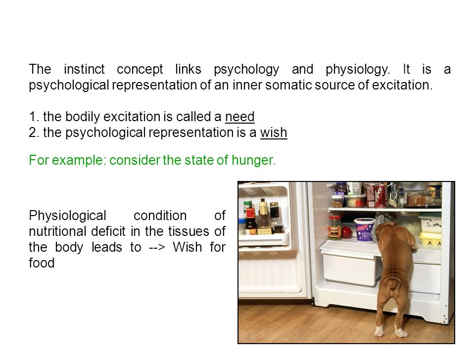 The instinct concept links psychology and physiology.