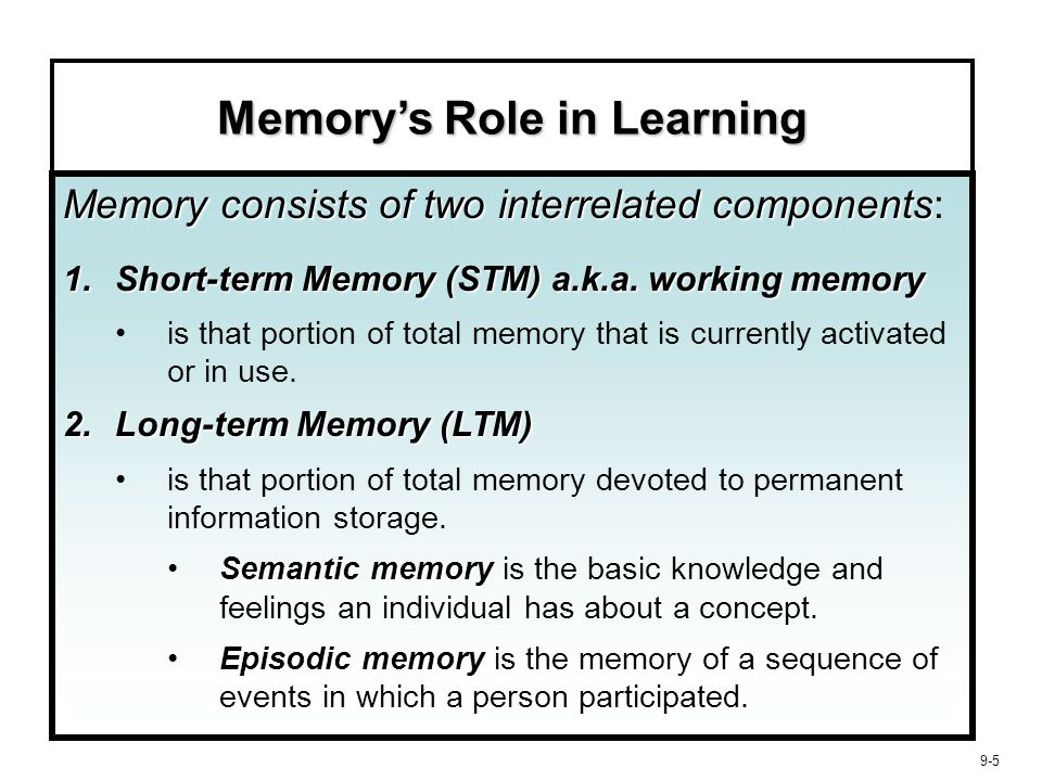 9-6 Memory's Role in Learning  STM is Short Lived maintenance rehearsalConsumers must constantly refresh information through maintenance rehearsal or it will be lost.