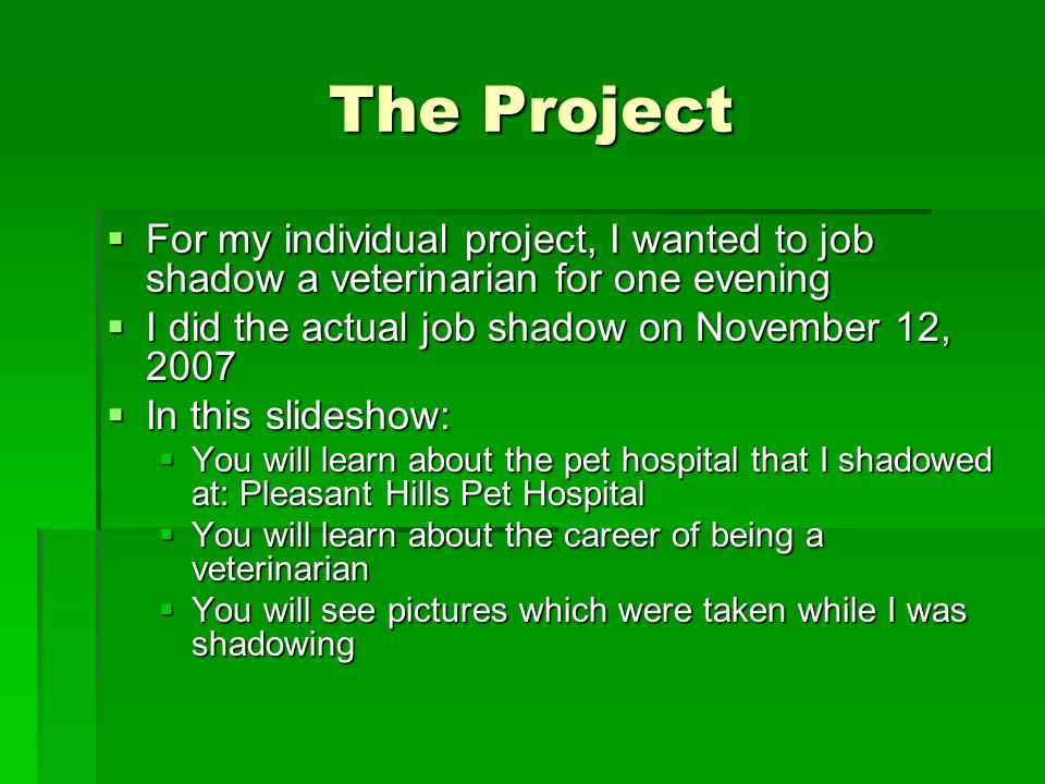 The Project  For my individual project, I wanted to job shadow a veterinarian for one evening  I did the actual job shadow on November 12, 2007  In