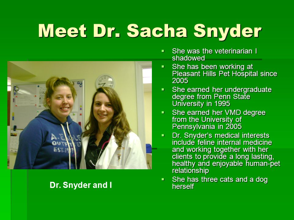 Meet Dr. Sacha Snyder  She was the veterinarian I shadowed  She has been working at Pleasant Hills Pet Hospital since 2005  She earned her undergra