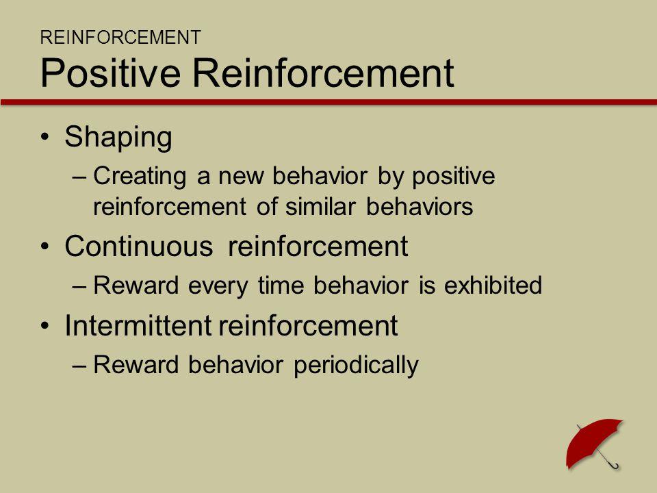 REINFORCEMENT Punishment Punishment –Connects undesirable behavior with unpleasant consequences Deny a reward No raise/pay reduction Reprimand
