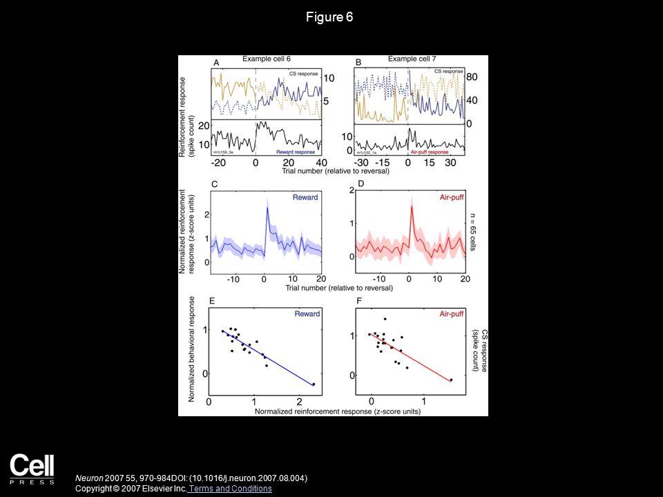 Figure 7 Neuron 2007 55, 970-984DOI: (10.1016/j.neuron.2007.08.004) Copyright © 2007 Elsevier Inc.