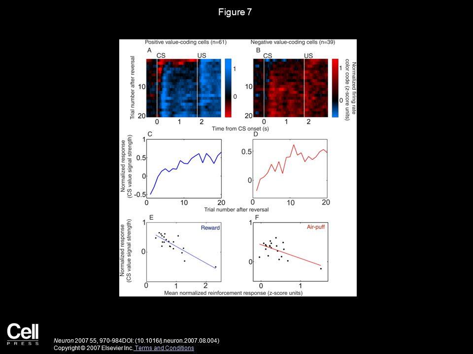 Figure 8 Neuron 2007 55, 970-984DOI: (10.1016/j.neuron.2007.08.004) Copyright © 2007 Elsevier Inc.
