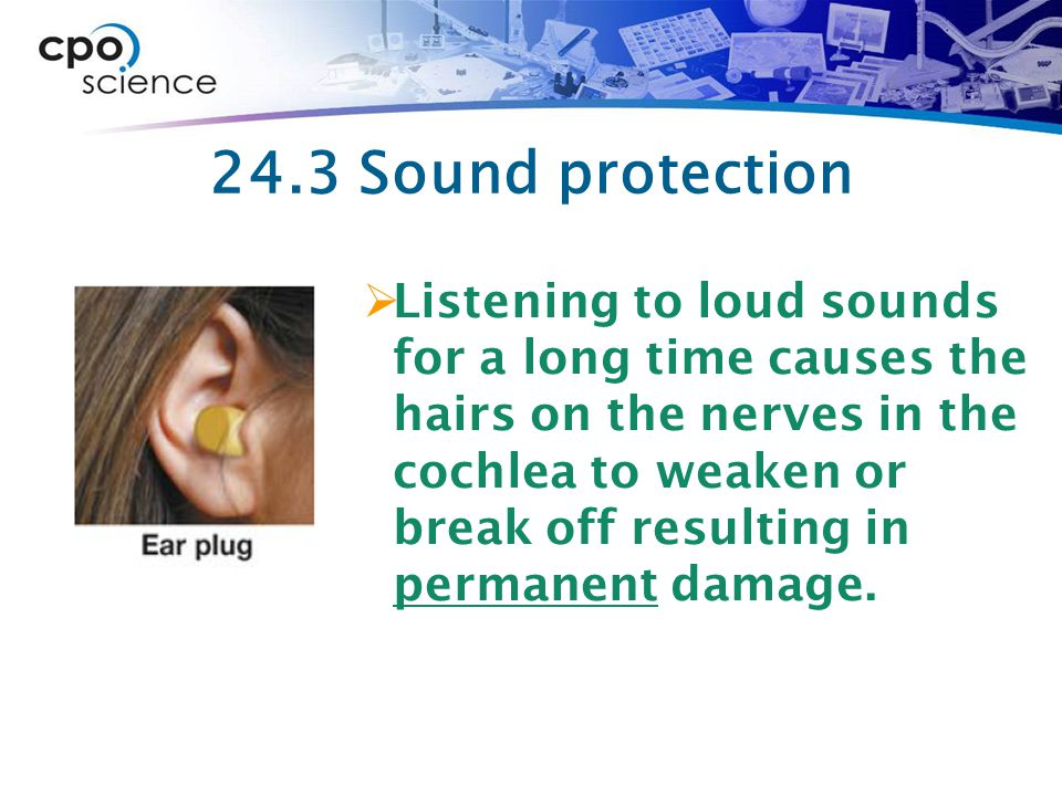 24.3 Sound protection  Listening to loud sounds for a long time causes the hairs on the nerves in the cochlea to weaken or break off resulting in permanent damage.