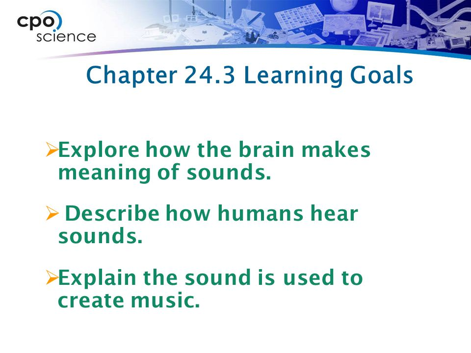 Chapter 24.3 Learning Goals  Explore how the brain makes meaning of sounds.