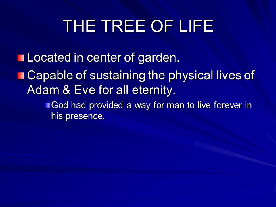 THE TREE OF LIFE Located in center of garden.