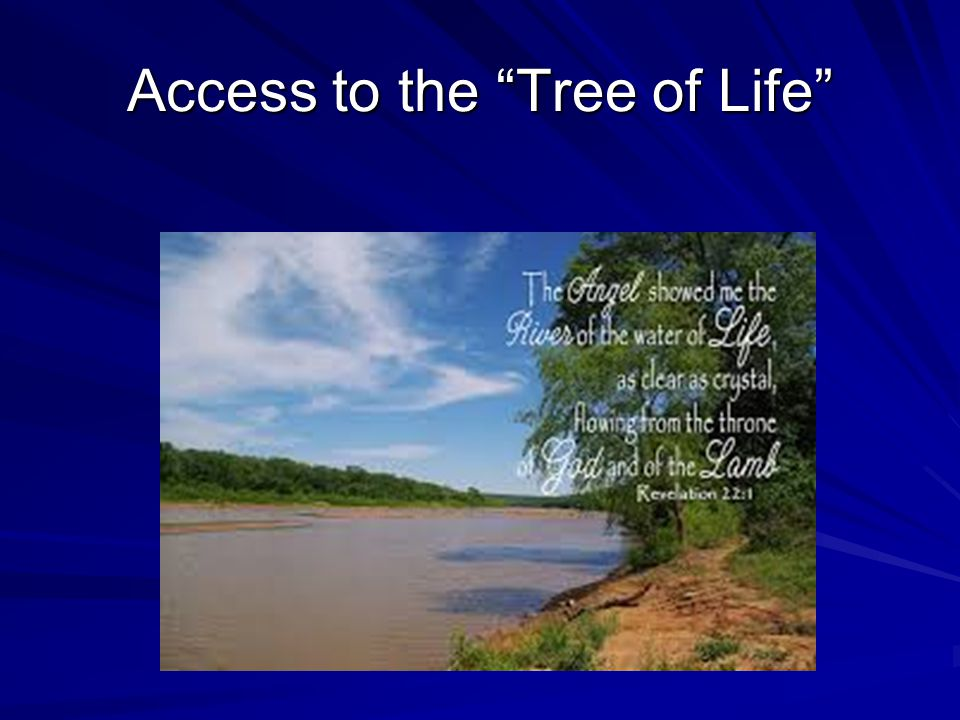 Access to the Tree of Life