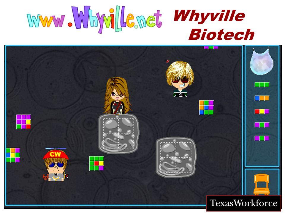 TM © numedeon, inc. 2004 Whyville Biotech