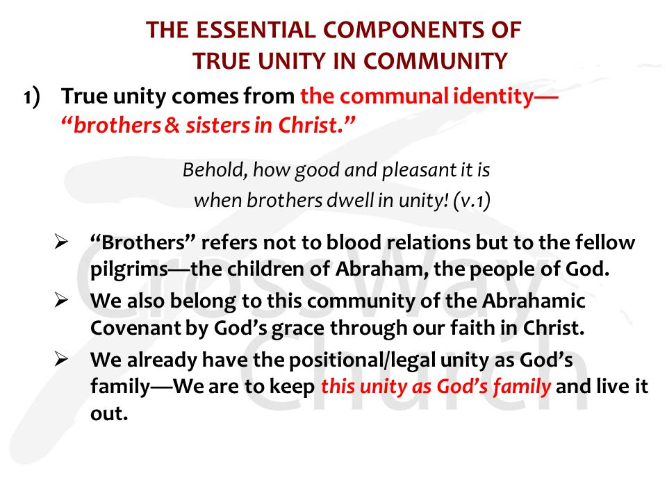 "THE ESSENTIAL COMPONENTS OF TRUE UNITY IN COMMUNITY 1)True unity comes from the communal identity— ""brothers & sisters in Christ."" Behold, how good an"