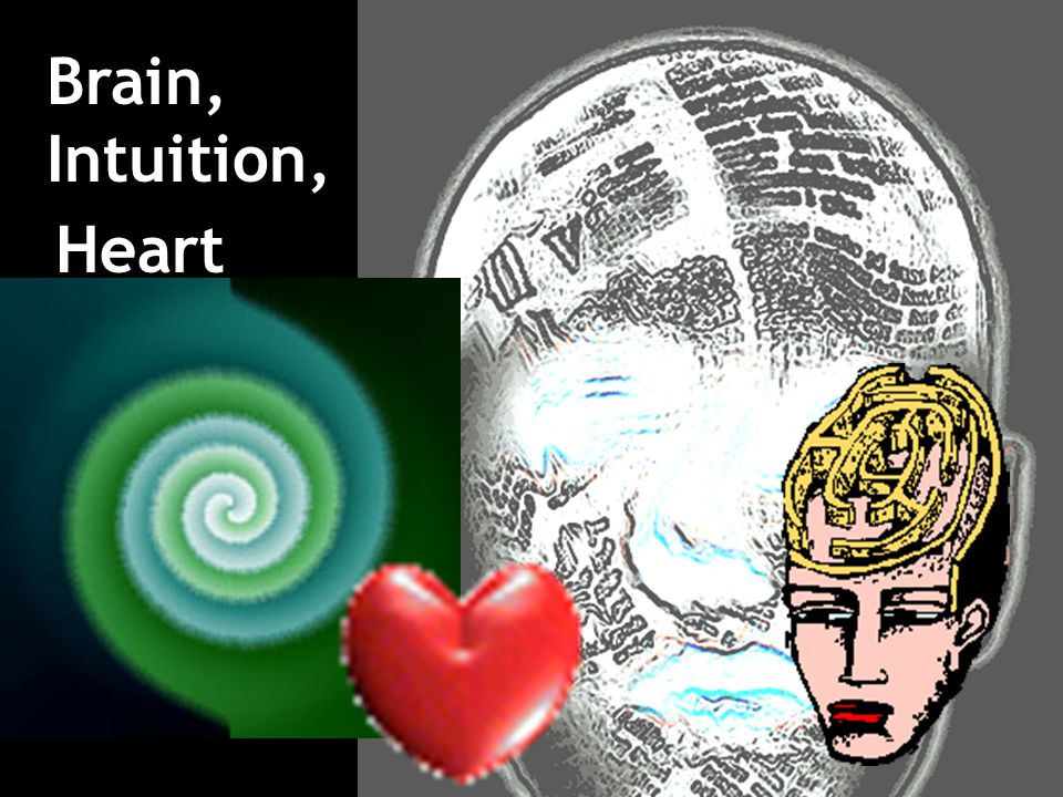 Brain, Intuition, Heart