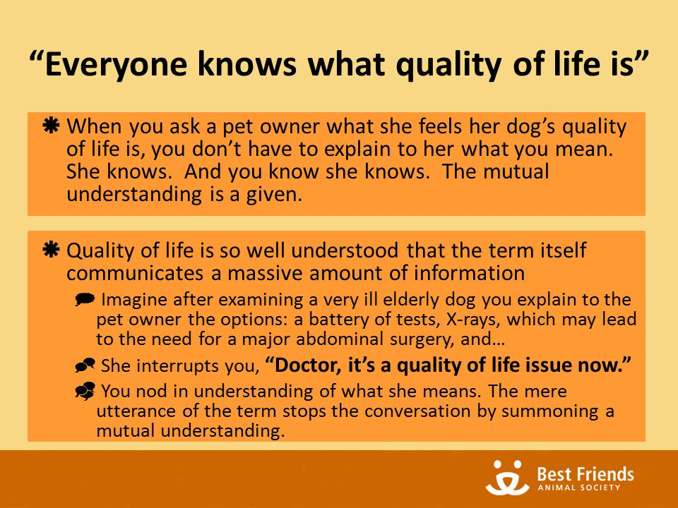 THE FEELINGS OF QUALITY OF LIFE Why do we have feelings?