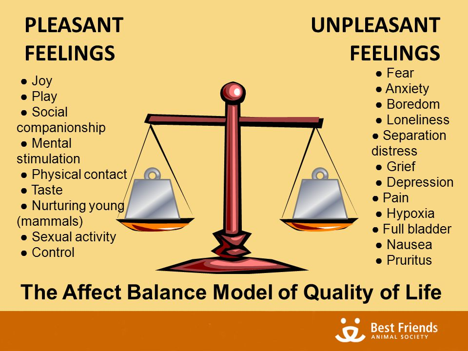 The Affect Balance Model of Quality of Life UNPLEASANT FEELINGS PLEASANT FEELINGS ● Joy ● Play ● Social companionship ● Mental stimulation ● Physical contact ● Taste ● Nurturing young (mammals) ● Sexual activity ● Control ● Fear ● Anxiety ● Boredom ● Loneliness ● Separation distress ● Grief ● Depression ● Pain ● Hypoxia ● Full bladder ● Nausea ● Pruritus