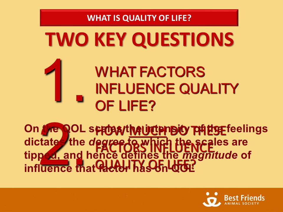TWO KEY QUESTIONS WHAT FACTORS INFLUENCE QUALITY OF LIFE.