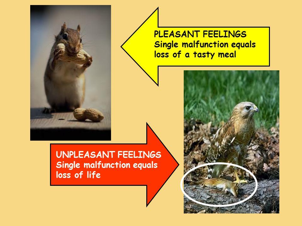 PLEASANT FEELINGS Single malfunction equals loss of a tasty meal UNPLEASANT FEELINGS Single malfunction equals loss of life