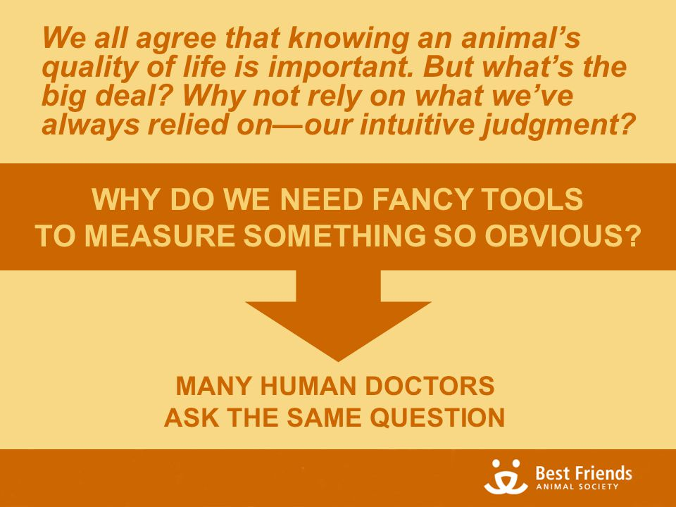 MANY HUMAN DOCTORS ASK THE SAME QUESTION We all agree that knowing an animal's quality of life is important.