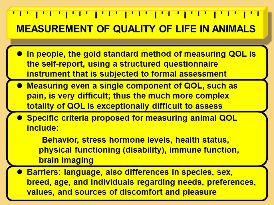In people, the gold standard method of measuring QOL is the self-report, using a structured questionnaire instrument that is subjected to formal assessment Measuring even a single component of QOL, such as pain, is very difficult; thus the much more complex totality of QOL is exceptionally difficult to assess Specific criteria proposed for measuring animal QOL include: Behavior, stress hormone levels, health status, physical functioning (disability), immune function, brain imaging Barriers: language, also differences in species, sex, breed, age, and individuals regarding needs, preferences, values, and sources of discomfort and pleasure MEASUREMENT OF QUALITY OF LIFE IN ANIMALS