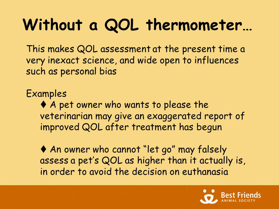 Without a QOL thermometer… This makes QOL assessment at the present time a very inexact science, and wide open to influences such as personal bias Examples  A pet owner who wants to please the veterinarian may give an exaggerated report of improved QOL after treatment has begun  An owner who cannot let go may falsely assess a pet's QOL as higher than it actually is, in order to avoid the decision on euthanasia