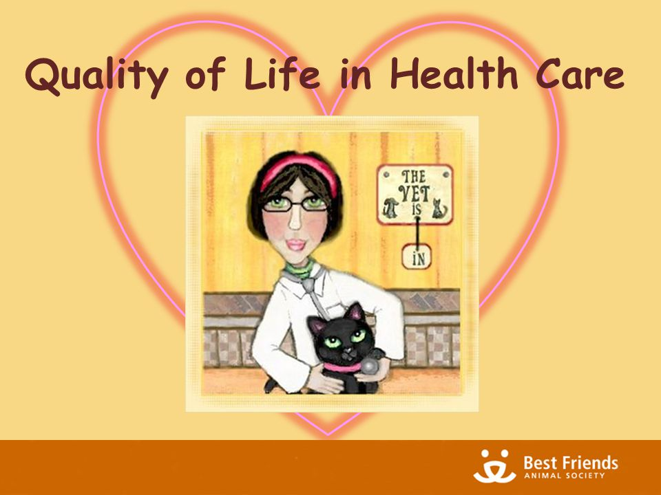 Quality of Life in Health Care