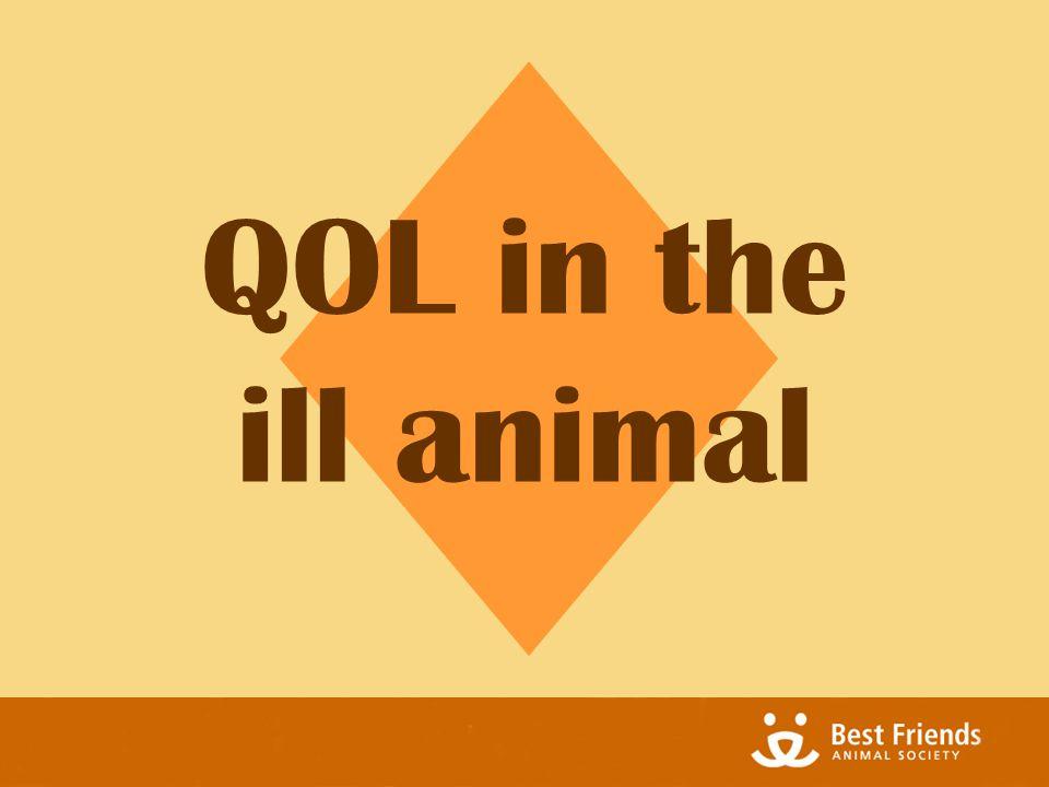 QOL in the ill animal
