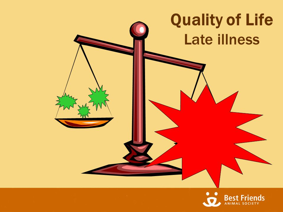 Quality of Life Late illness