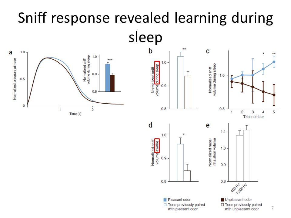 Sniff response revealed learning during sleep 7