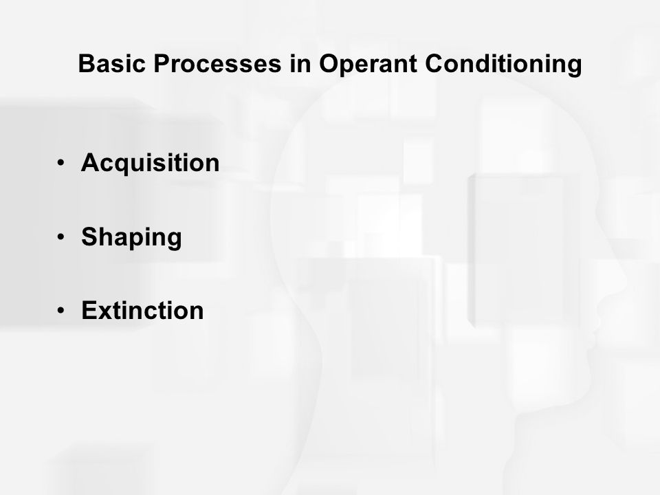 Basic Processes in Operant Conditioning Acquisition Shaping Extinction