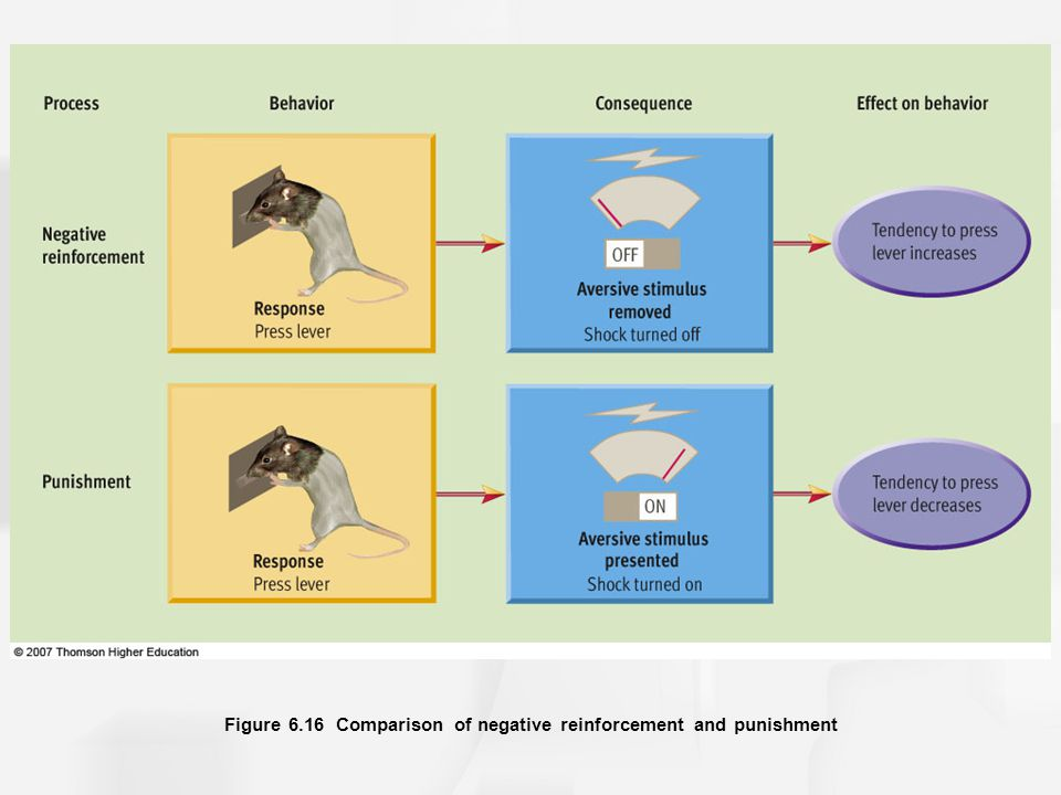 Figure 6.16 Comparison of negative reinforcement and punishment