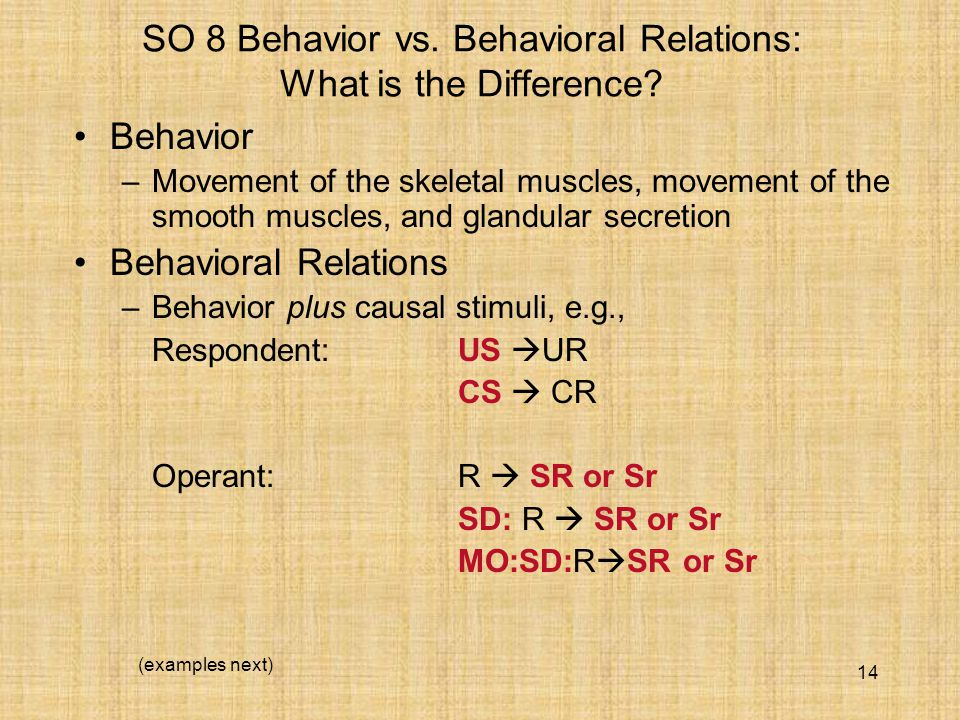 14 SO 8 Behavior vs. Behavioral Relations: What is the Difference.