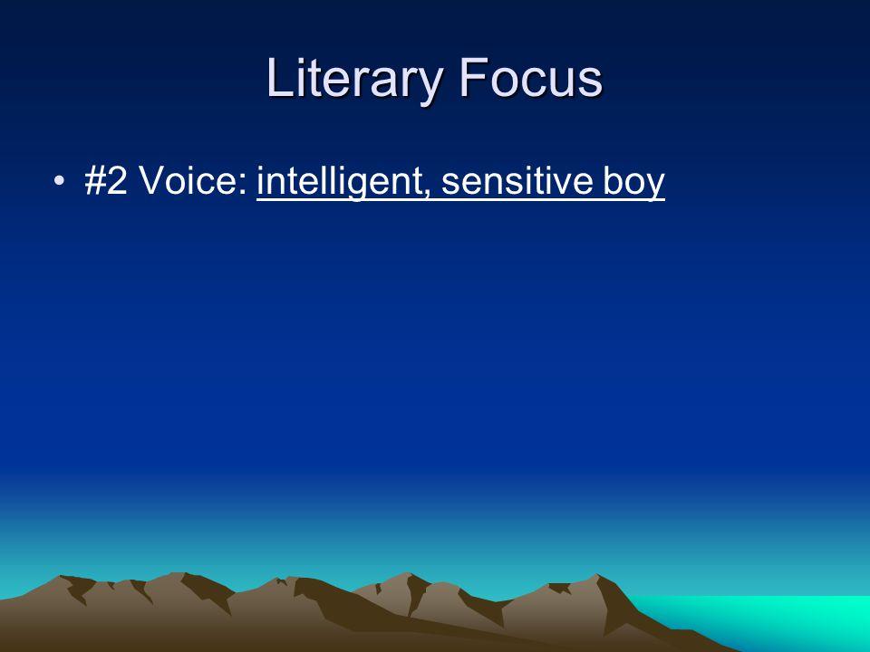 Literary Focus #2 Voice: intelligent, sensitive boy