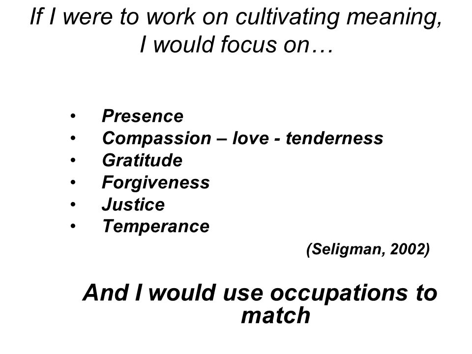 An occupational tool box for the soul Core elements of meaning Compassion- love Gratitude Forgiveness Justice Temperance With the occupations to match Centering Contemplation Connectedness Creation Contribution