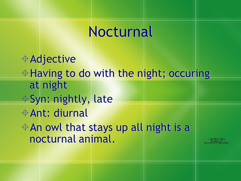 Nocturnal  Adjective  Having to do with the night; occuring at night  Syn: nightly, late  Ant: diurnal  An owl that stays up all night is a nocturnal animal.
