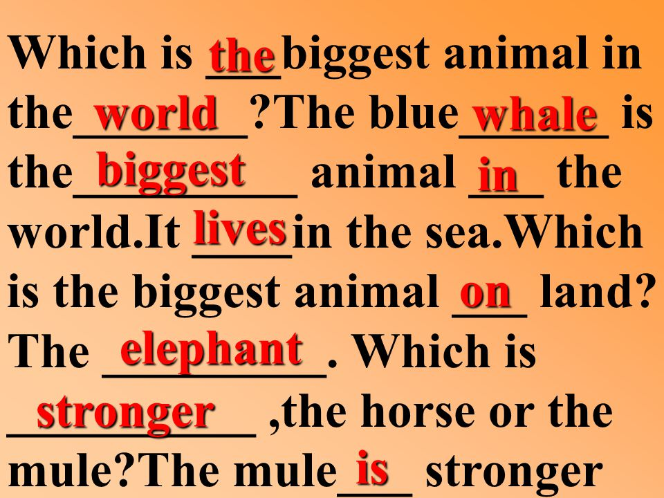 Which is ___biggest animal in the_______ The blue______ is the_________ animal ___ the world.It ____in the sea.Which is the biggest animal ___ land.