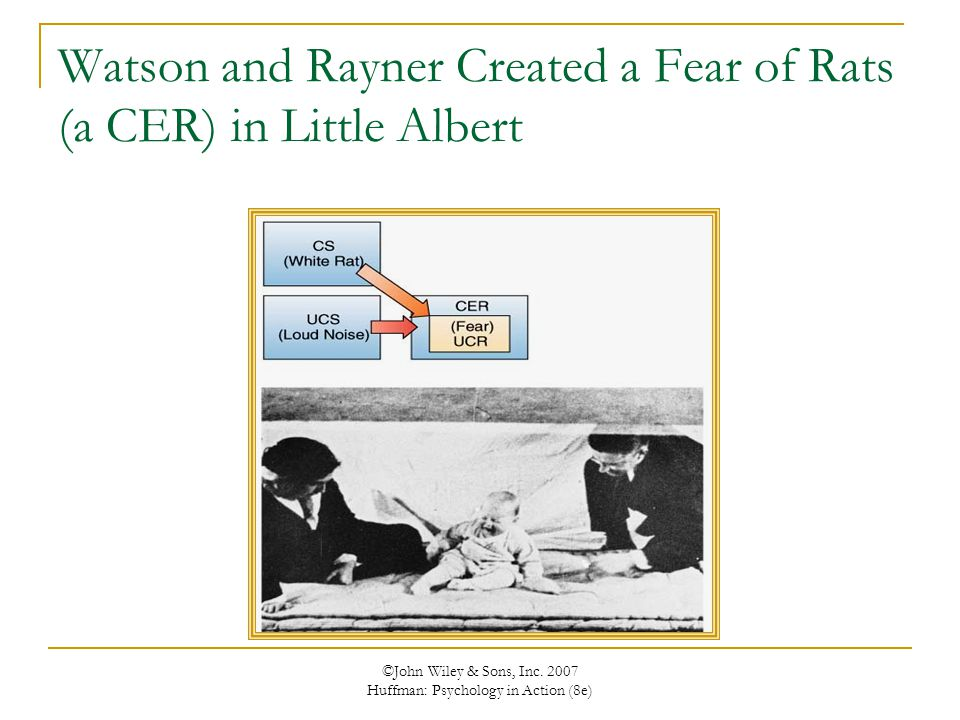 ©John Wiley & Sons, Inc. 2007 Huffman: Psychology in Action (8e) Watson and Rayner Created a Fear of Rats (a CER) in Little Albert