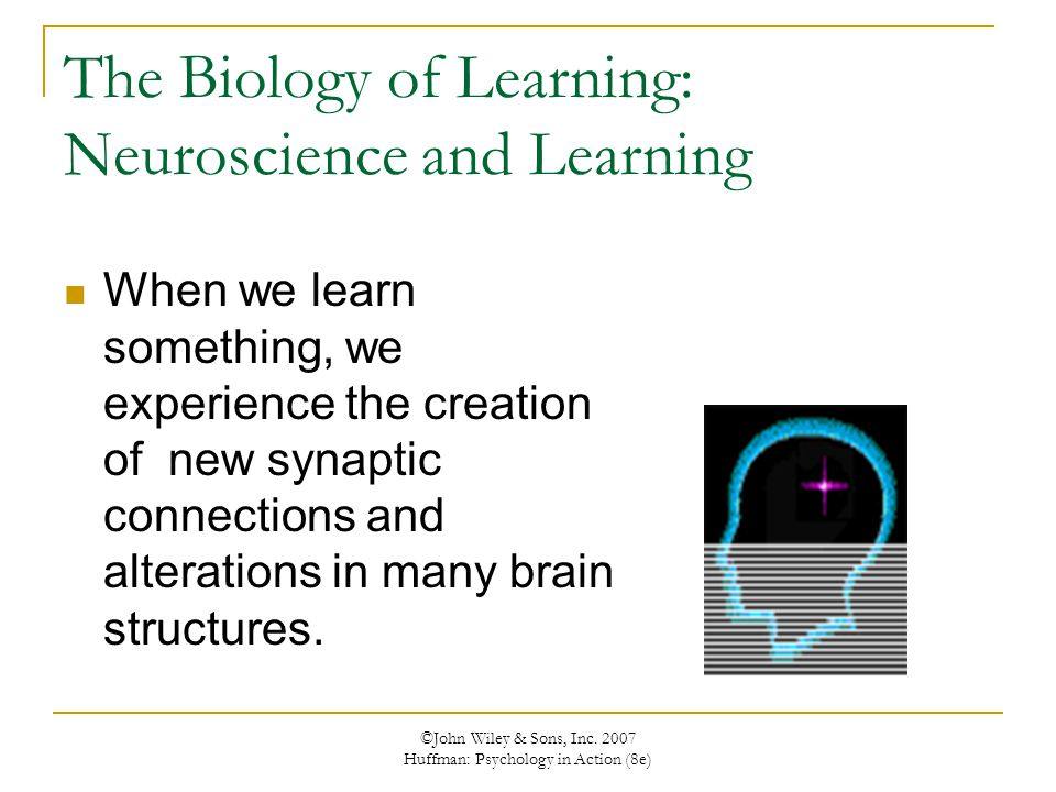 ©John Wiley & Sons, Inc. 2007 Huffman: Psychology in Action (8e) The Biology of Learning: Neuroscience and Learning When we learn something, we experi