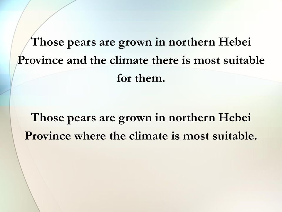 Those pears are grown in northern Hebei Province and the climate there is most suitable for them. Those pears are grown in northern Hebei Province whe
