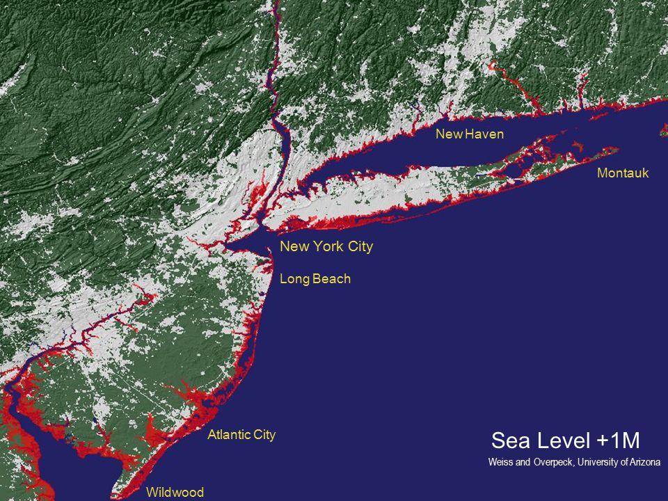 Sea Level +1M New York City Long Beach Atlantic City Wildwood Montauk New Haven Weiss and Overpeck, University of Arizona
