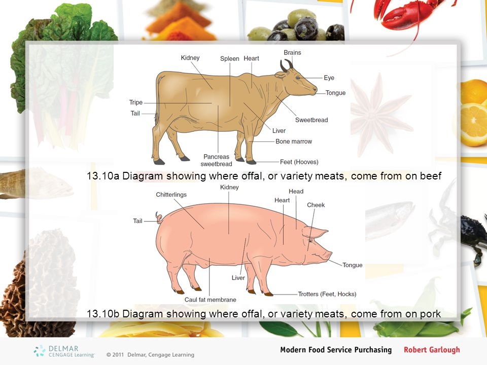 13.10b Diagram showing where offal, or variety meats, come from on pork 13.10a Diagram showing where offal, or variety meats, come from on beef