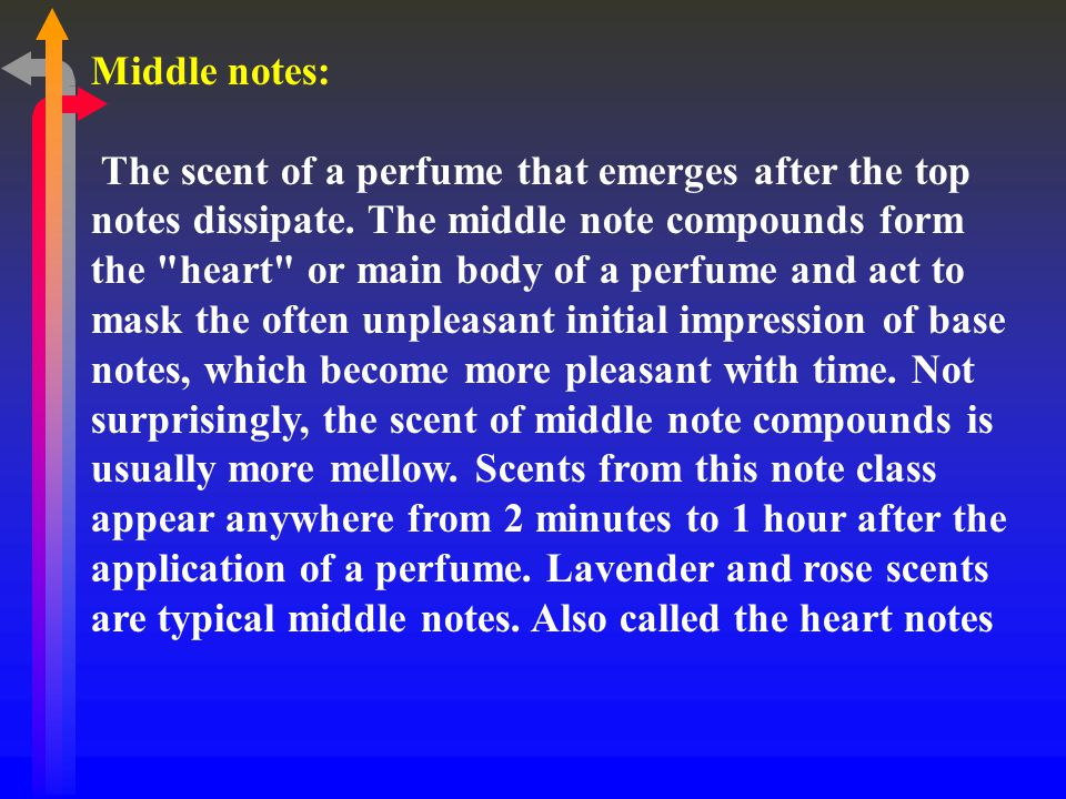 Middle notes: The scent of a perfume that emerges after the top notes dissipate.
