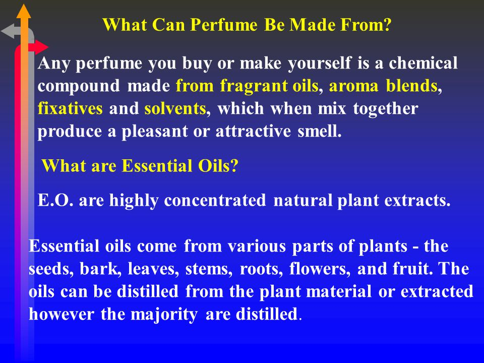 What Can Perfume Be Made From.