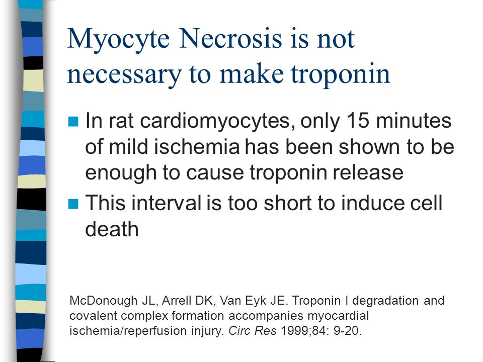 Myocyte Necrosis is not necessary to make troponin In rat cardiomyocytes, only 15 minutes of mild ischemia has been shown to be enough to cause troponin release This interval is too short to induce cell death McDonough JL, Arrell DK, Van Eyk JE.