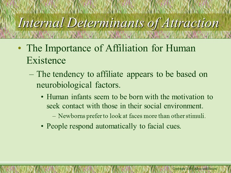 Copyright 2006, Allyn and Bacon Internal Determinants of Attraction The Importance of Affiliation for Human Existence –The tendency to affiliate appears to be based on neurobiological factors.