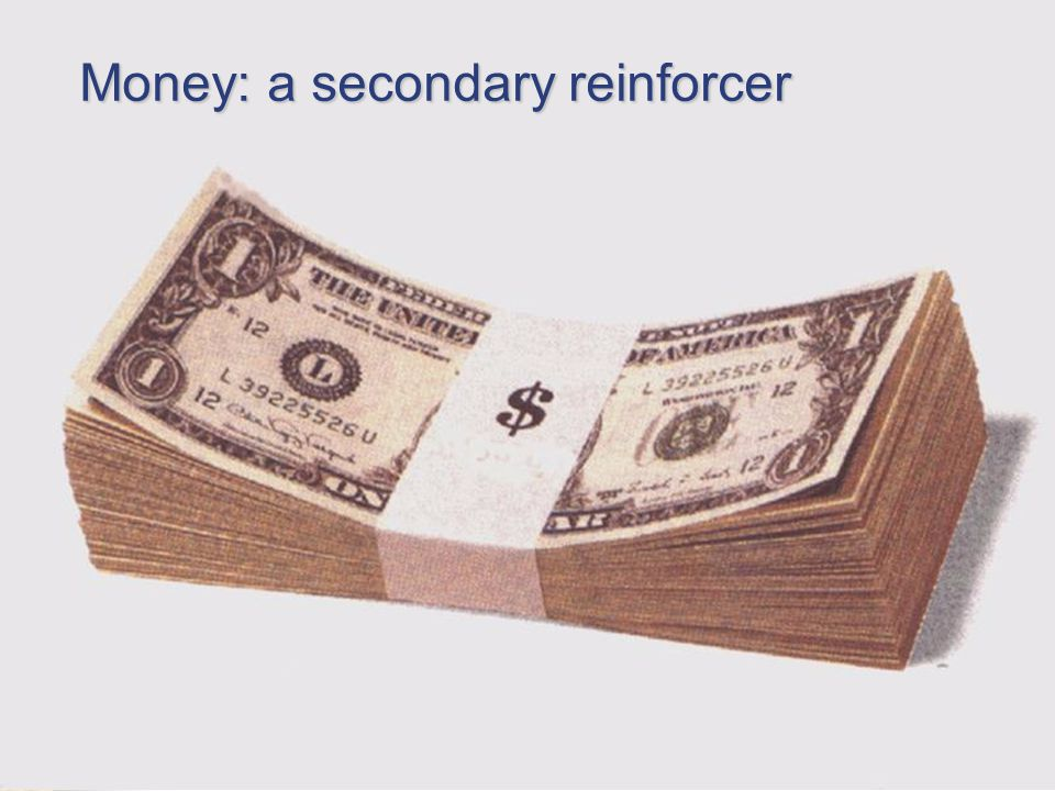 Psych 101 Chapter 6 28 Money: a secondary reinforcer