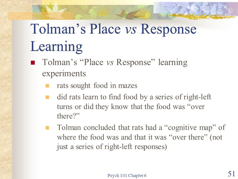 "Psych 101 Chapter 6 51 Tolman's Place vs Response Learning Tolman's ""Place vs Response"" learning experiments rats sought food in mazes did rats learn"